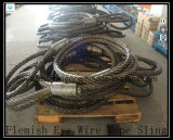 Cuerda de alambre brillante del acero 6X37 Iwrc Eips