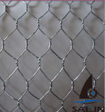 [سيلين] فولاذ سداسيّة [شكن وير] لأنّ ثمرة حماية سياج