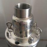 650W Pompen de Met duikvermogen van de ZonneMacht van 4inch, de Spiraalvormige Pomp van de Rotor