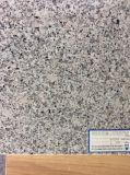 De nevelige Mauve G664 Tegels van het Graniet voor Countertop van de Vloer/van de Muur/van de Keuken