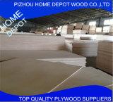 Folha comercial da madeira compensada de /Marine da madeira compensada de Okoume/Bintangor/Poplar/Birch