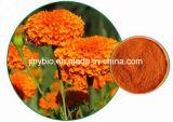 高く自然なゼアキサンチン10%; ルテイン5%-80%のマリーゴールドの花のエキス