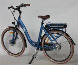 En15194 (JSL036C-2)の36V 250W 8funの前部ブラシレスモーター電気自転車
