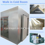 OEMデザインのレストランのための商業冷蔵室の冷たい記憶装置