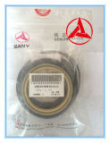 Numero del pezzo 60067379k della guarnizione del cilindro del braccio dell'escavatore di Sany per Sy235