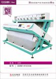 El RGB pulsa la máquina de Hefei, China del compaginador del color del arroz
