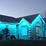 SMD5630 indicatore luminoso di striscia esterno della decorazione LED per la decorazione del giardino