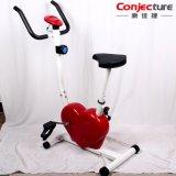 Qualitäts-magnetisches Übungs-Fahrrad-Kursleiter-Ausgangseignung-Gerät