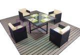 Im Freienhof-Garten-Freizeit-Hotel-Kaffee-Stab, der Möbel mit PET Rattan speist