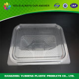 Rechteckiger Plastiknahrungsmittelbehälter, freier Wegwerfbehälter