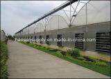 Prüfender Ventilator-Stall, der haltbarer Ventilator-staubdichten Wasser-Beweis-Textilfabrik-Entlüfter laufen lässt