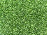 판매를 위한 Kaiqi 인공적인 잔디, 골프 필드, 문 경기장을%s 인공적인 잔디