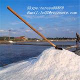 Chlorure de sodium de 99% pour la tablette, capsule, plus mince