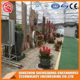 꽃을%s 중국 알루미늄 단면도 유리제 온실