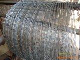 형무소 방호벽을%s 직류 전기를 통한 면도칼 철사