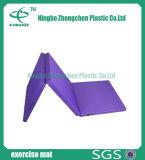 Couvre-tapis antidérapants d'exercice de gymnastique de cuir et d'éponge de qualité supérieur