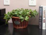 (BC-WF1012) Cestino naturale Handmade puro del fiore del salice