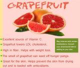 飲料および食糧味のためのグレープフルーツジュースの粉