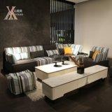Il sofà del tessuto del salone ha impostato (803#)