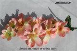 2017hot, das künstliche Blumen-Motten-Orchidee nach Hause verzieren verkauft