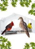 Casas por atacado do pássaro com bandejas removíveis