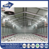 高品質の鋼鉄構築の養鶏場