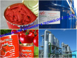Goma de tomate de la alta calidad de la fuente de Shjump y equipos de proceso