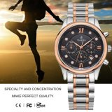 普及したメンズスポーツの腕時計のステンレス鋼の自動腕時計のクロノグラフWristband72163