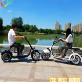 """Motocicleta elétrica de viagem verde dos Cocos elétricos da cidade do """"trotinette"""""""