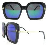 Cateye 색안경 주문 색안경은 형식 색안경을 도매한다