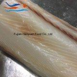 海によってフリーズされるヨシキリザメの肉付け
