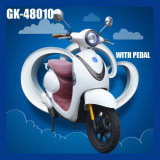 (あるGeist) Highquality Cheap 48V 12ah 350W Electric Bike