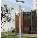 indicatore luminoso solare del giardino del doppio braccio 5W per illuminazione della strada