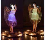 Пластичное платье способа платья этапа волокна платья волокна ткани ткани стекловолокна