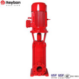 수직 Light Multistage Stainless Steel Centrifugal Pump (304 316 316L)