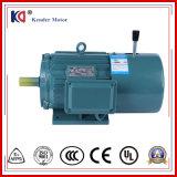 Motore a corrente alternata Elettrico del freno di serie di Yej