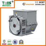 TOPS STF 380V 400V Double Bearing 20kw Generator