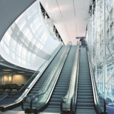 Preiswerter Flughafen-Wohnelektrische Hauptinnenrolltreppe
