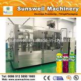 Perfecte Verkoop van de Verwerking Line/Plant van het Water van de Machines/van het Fruit van Filiing van het Sap