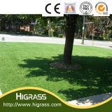 SGS及びセリウムによって証明される装飾的な美化の総合的な草