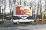Schermo esterno del segno della visualizzazione di messaggio di colore completo LED del TUFFO P16