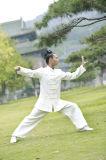 Tai van Wudang de Lagen van de Slijtage van de Vechtsporten van het Linnen van de Lente & van de Zomer van de Chi