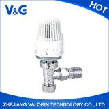 La meilleure valve thermostatique de radiateur de Valogin