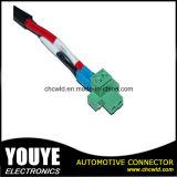 Harness del alambre y asamblea de cable de encargo