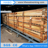 Hf/RF Vacuum Wood Dryer Machine für Drying Oak Teak Walnut Wood