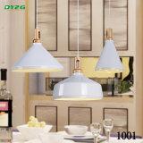 Luz casera decorativa antigua de la lámpara de la iluminación/Byzg de iluminación pendiente 1001-1