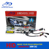 2016 Ew-Works Tn-3007 Gleichstrom 35W 12V Normal Xenon Kit HID Auto Headlight Highquality und Competitive Price CER RoHS