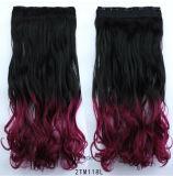 Clip chaud de la vente 2016 dans le clip de Vierge de cheveu bouclé dans des extensions de cheveu