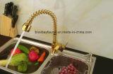 L'ottone estrae il miscelatore dorato della cucina della molla