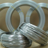 Galvanisiertes Iron Wire mit Highquality innen auf Hot Sale